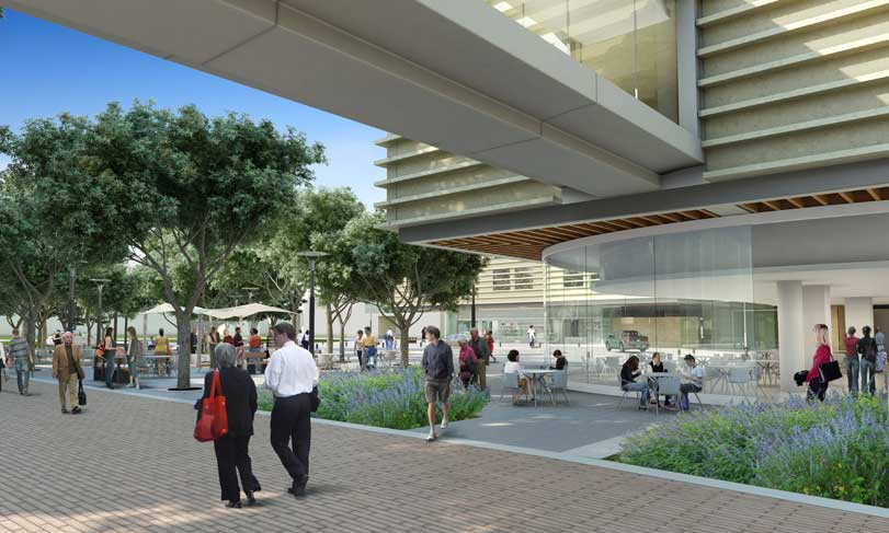 <span class='st_sharethis' st_title='THE NEW STANFORD HOSPITAL' st_url='http://www.sumcrenewal.org/photos_videos/the-new-stanford-hospital/' displayText='Share'></span> THE NEW STANFORD HOSPITAL <a href='http://www.sumcrenewal.org/photos_videos/the-new-stanford-hospital/'>Permalink</a><br/>